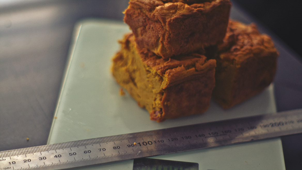 (COMING SOON) Pea Protein Meat Loaf Recipe